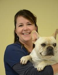 female veterinary technician holding beige french bulldog