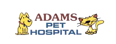 Logo for Adams Pet Hospital